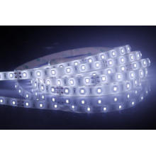 12V standard 2835 LED Strip light